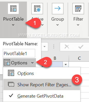 Menu Show Report Filter Pages